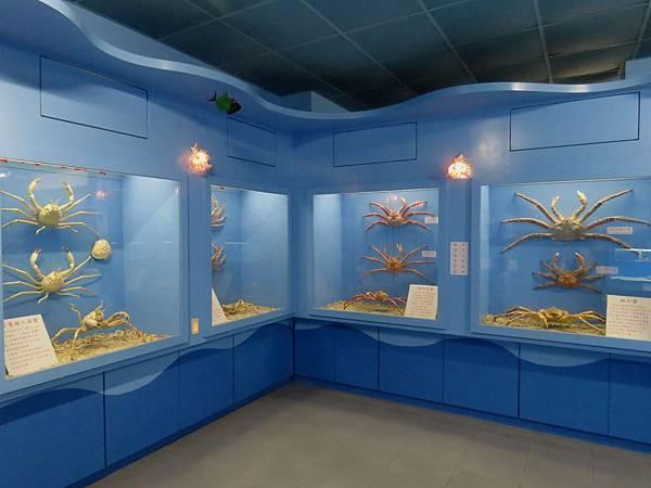 0081澎湖縣西嶼鄉螃蟹博物館