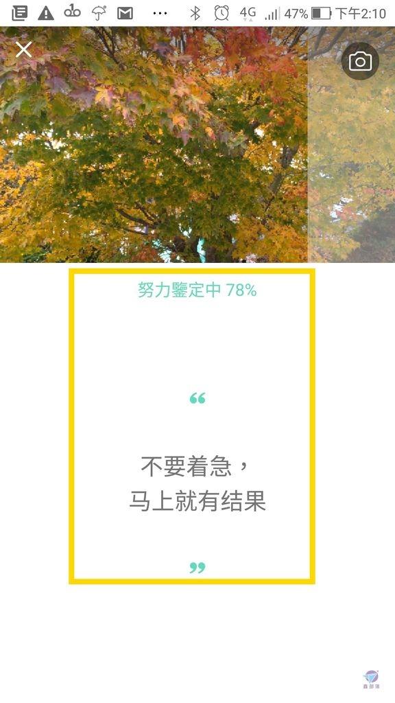 Pixnet-0861-14.jpg