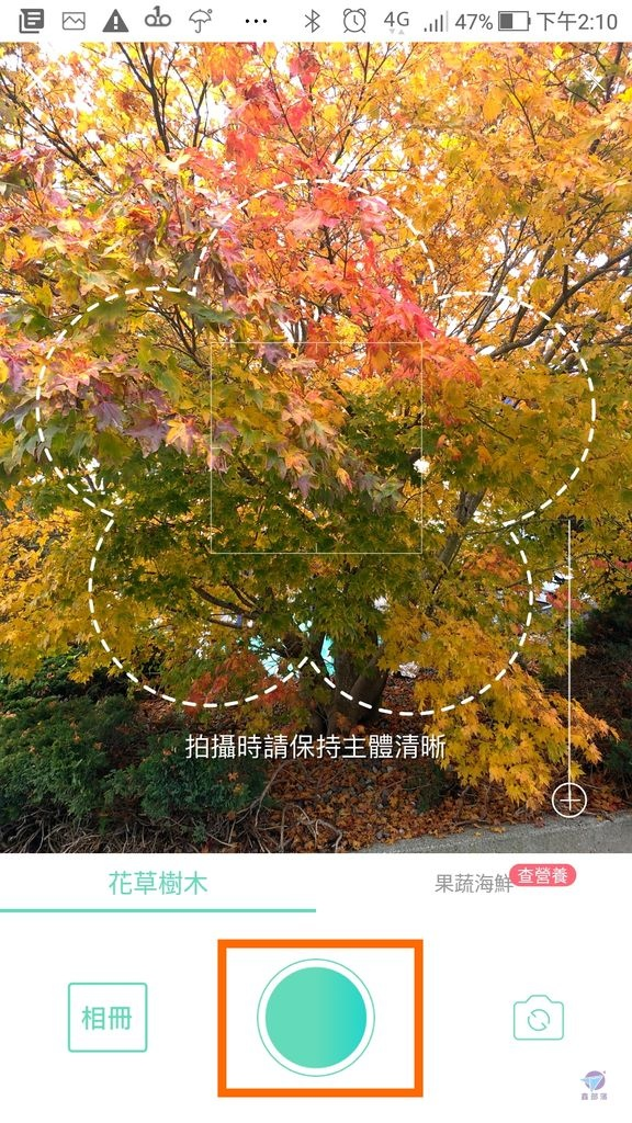 Pixnet-0861-13.jpg