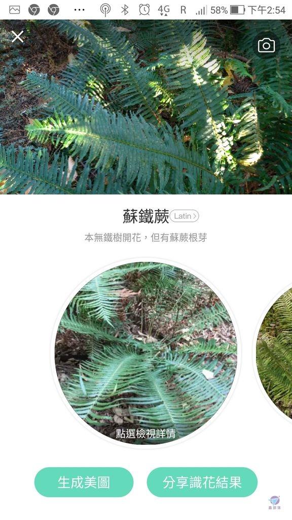 Pixnet-0861-20.jpg