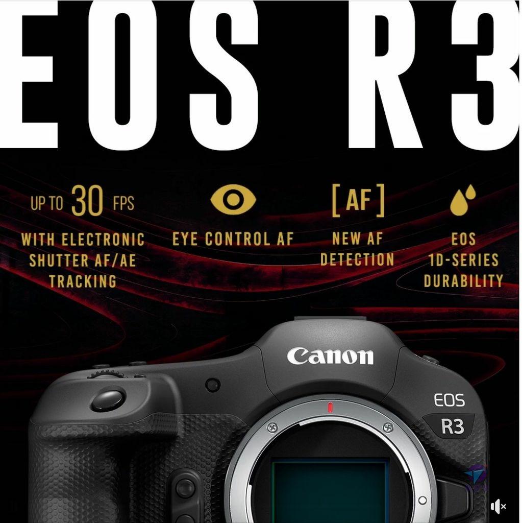 Pixnet-1051-002 canon eos r3 05_结果.jpg