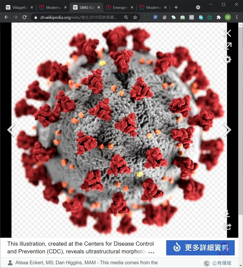 Pixnet-1062-003 covid-19 09_结果.jpg
