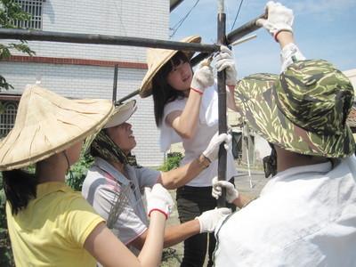 社區居民也一起動手築瓜棚