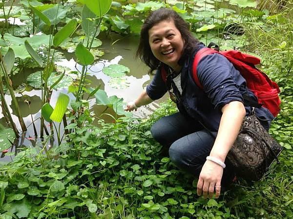 新竹玉山麵創葉