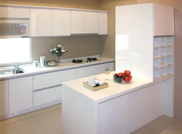 新屋廚具-雙一型002.jpg
