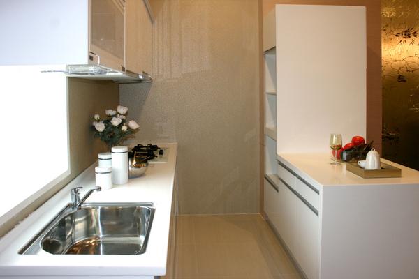 新屋廚具-雙一型004.jpg
