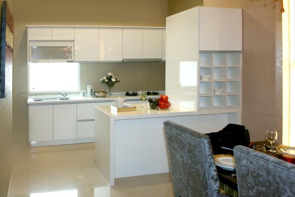 新屋廚具-雙一型006.jpg