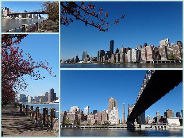 Apr 8 - Roosevelt island, Easter parade in 5th Avenue, CentraL park, Rockfeeller center, Top of the rock1