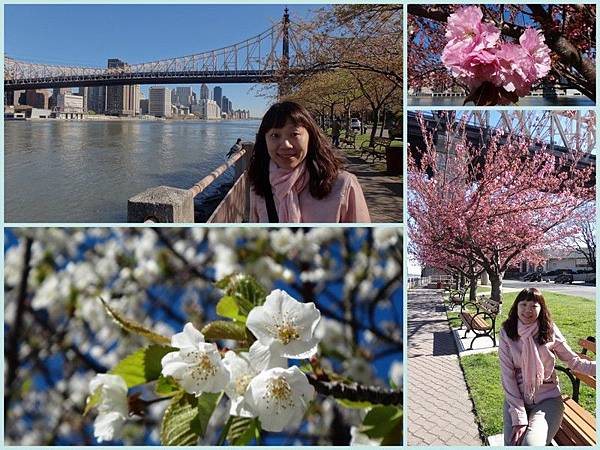 Apr 8 - Roosevelt island, Easter parade in 5th Avenue, CentraL park, Rockfeeller center, Top of the rock2