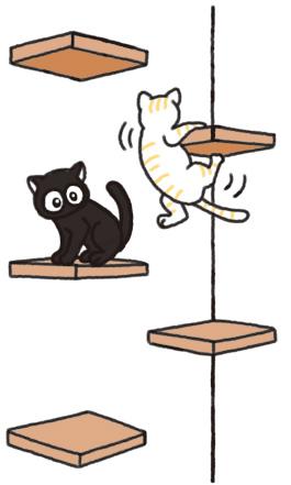 各地的貓咪咖啡廳介紹_2.jpg