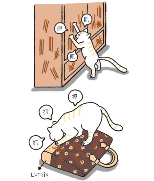 各地的貓咪咖啡廳介紹_3.jpg