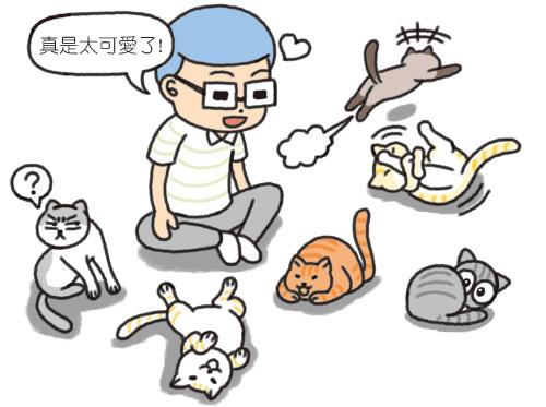 各地的貓咪咖啡廳介紹_4.jpg