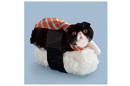 絕對讓你笑出來的寵物服裝介紹_16.jpg