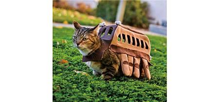 絕對讓你笑出來的寵物服裝介紹_19.jpg