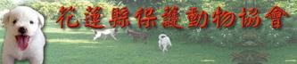 關懷流浪動物_9.jpg