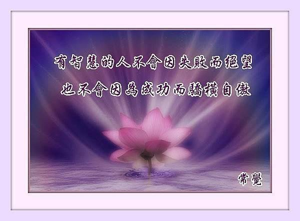 1003968_464495293636735_348110625_n
