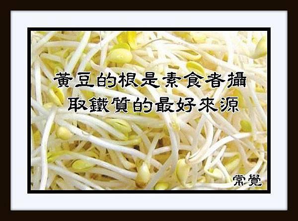 B2 豆的根是素食者攝取鐵質的最好來源。