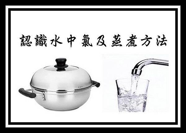 認識水中氯