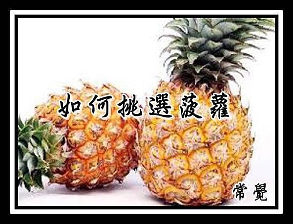 如何挑選菠蘿