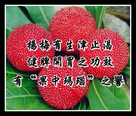Company-2011-6-651d611b-b33e-494e-84a5-5f5a5870f4e1
