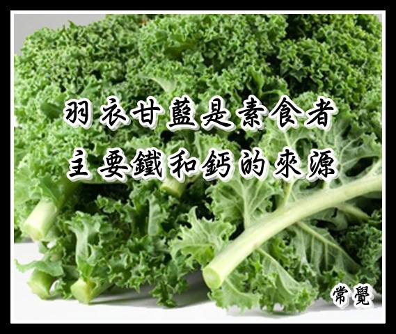 羽衣甘藍是素食者鐵和鈣的絕佳來源