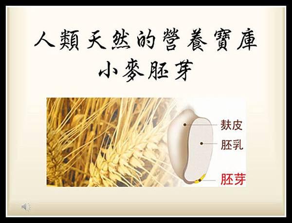 1小麥胚芽營養成份r