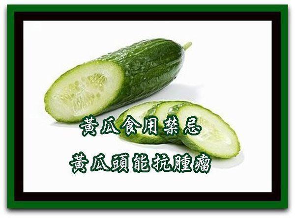 2 青瓜食用禁忌