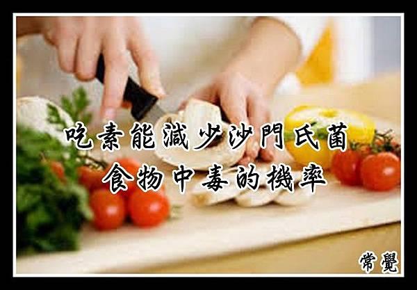 吃素能減少沙門氏菌