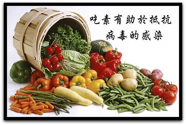 吃素有助於抵抗