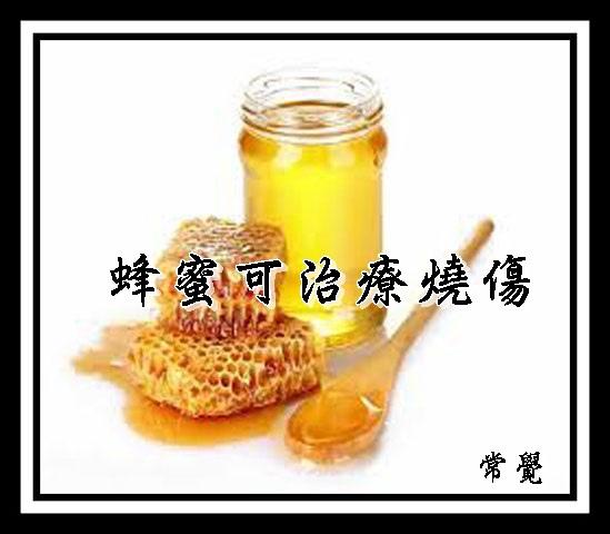 蜂蜜是治療燒傷