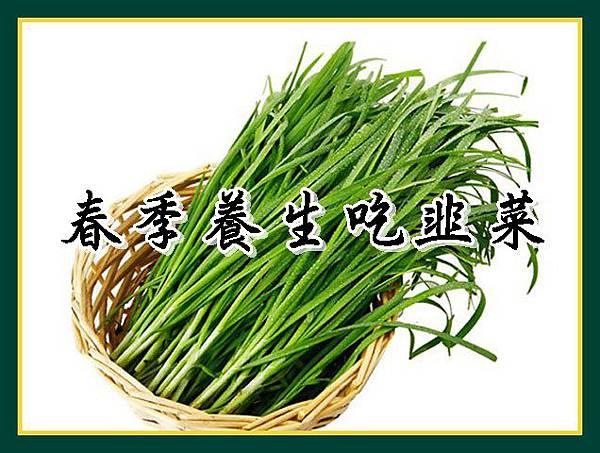 春季養生吃韭菜