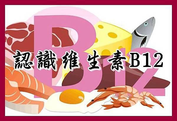 認識維生素B12