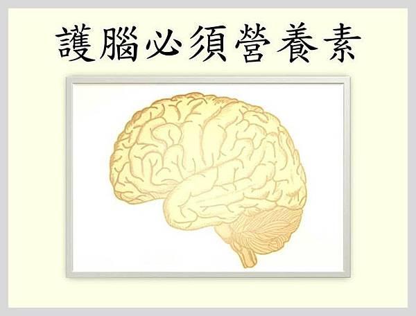 護腦必須營養素2 (2)