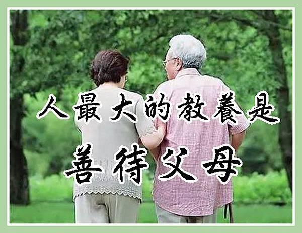 人最大的教養是善待父母