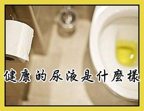 健康的尿液是什麼樣