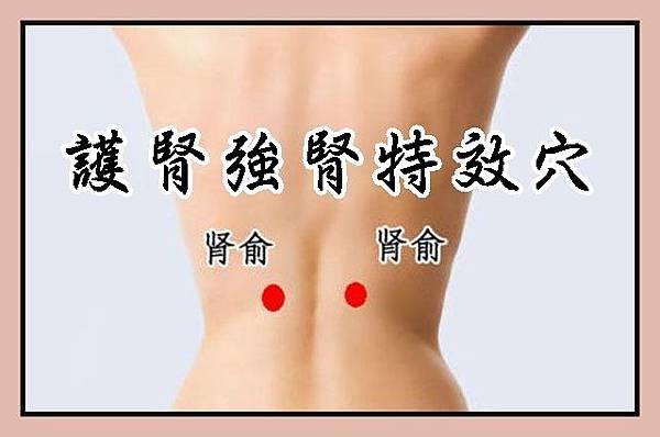 護腎強腎特效穴