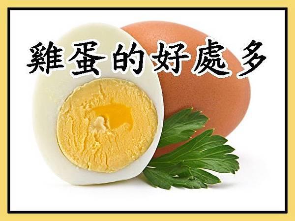 雞蛋的好處多 (2)