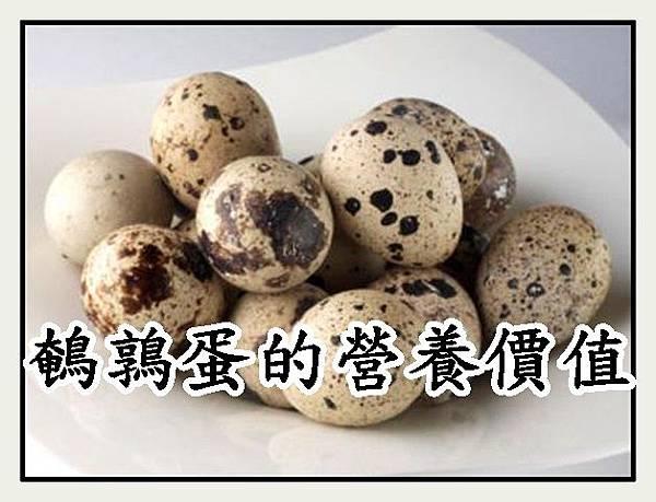 鵪鶉蛋的營養價值