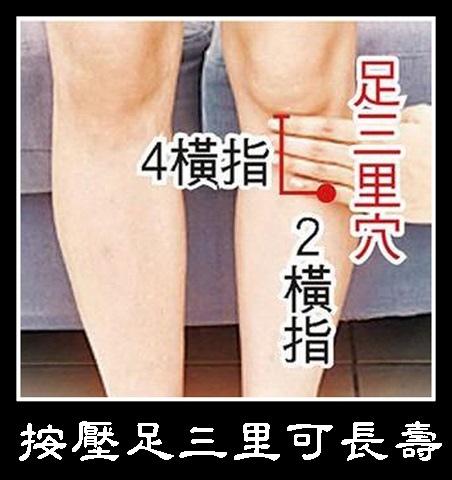 經常按壓足三里可延年益壽 (1)