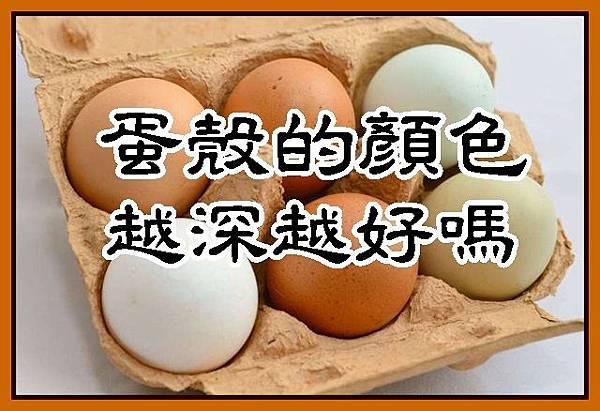 蛋殼的顏色越深越好嗎