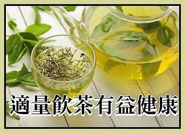 適量飲茶有益健康