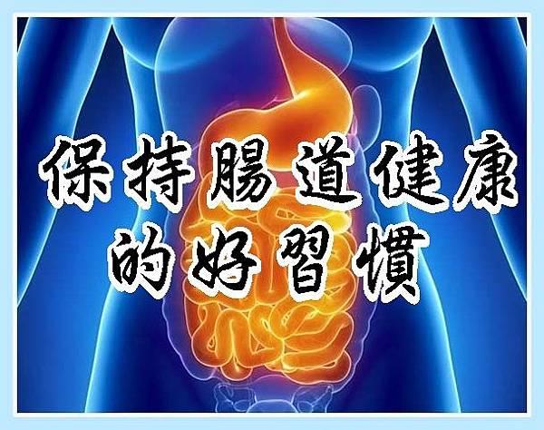 保持腸道健康的好習慣