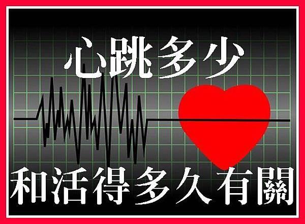 心跳多少和活得多久有關