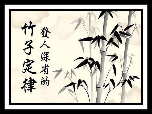 發人深省的竹子定律