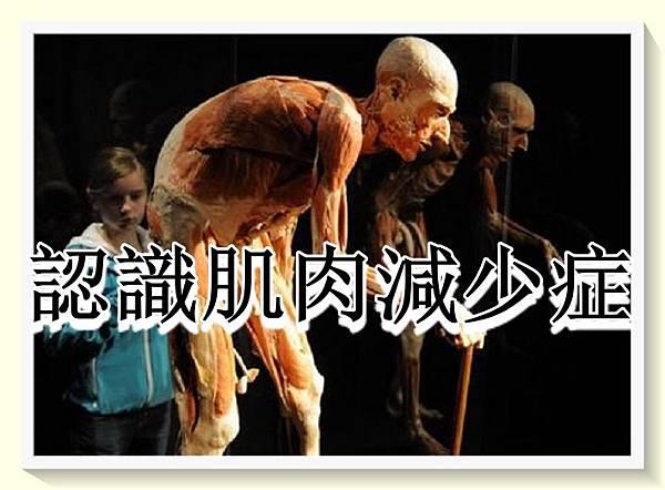 認識肌肉減少症1.jpg