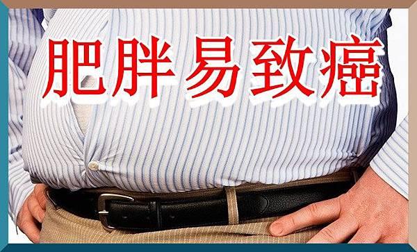 研究公報肥胖易致癌.jpg