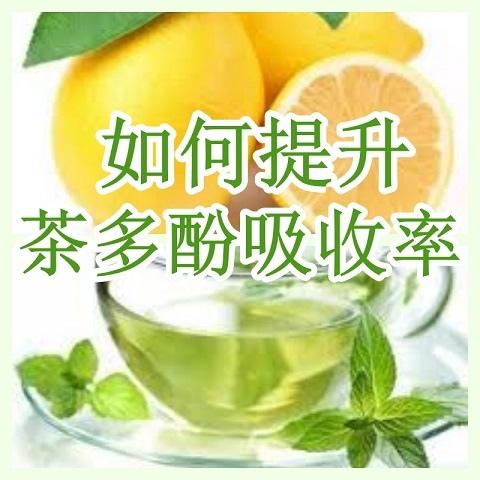 如何提升茶多酚吸收率.jpg