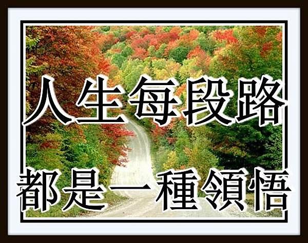 人生每段路都是一種領悟!.jpg