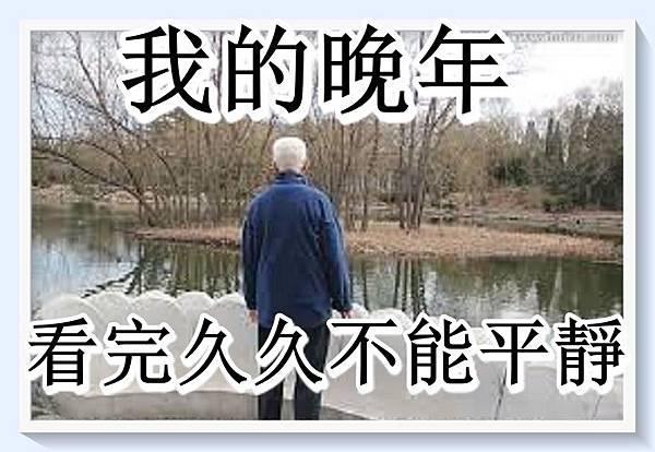 《 我的晚年 》看完久久不能平靜!.jpg