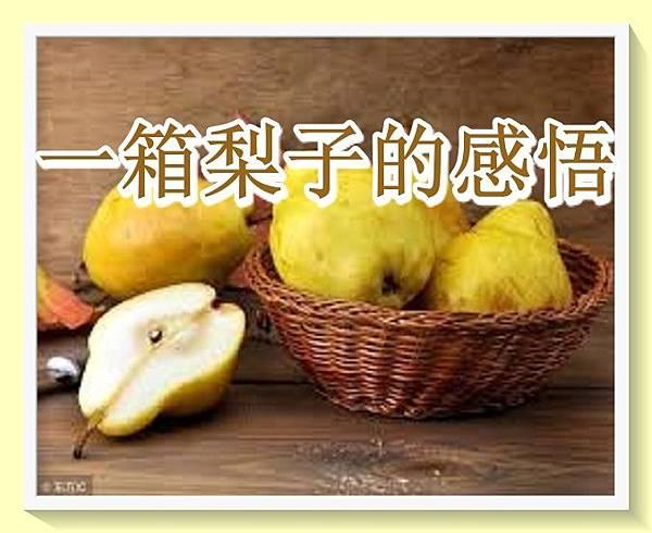 一箱梨子的感悟.jpg